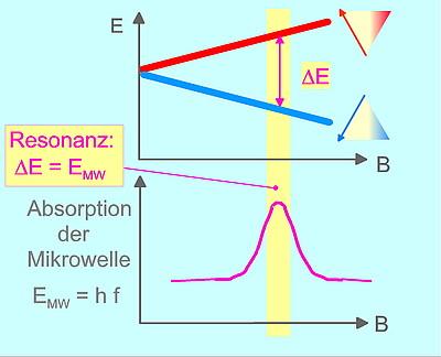 Elektronen Spin